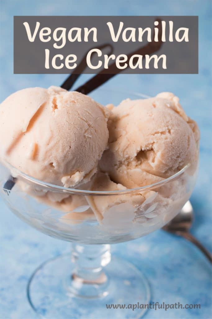 Bowl of Vegan Vanilla Ice Cream with Pinterest title