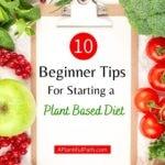 Pinterest image for plant based diet tips