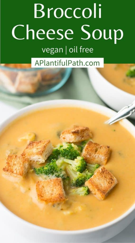 Pnterest Image for Broccoli Cheese Soup